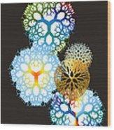 No. 917 Wood Print