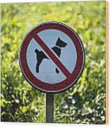 No Dogs Allowed Sign Wood Print