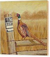 No Hunting   Pheasant Wood Print