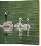 Geese Family Wood Print