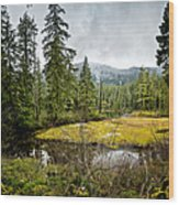 No Man's Land Wood Print