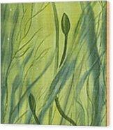 No Mud No Lotus Wood Print