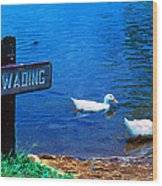 No Wading Wood Print
