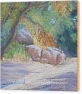 No Water At Cienega Creek Wood Print