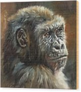 Noble Ape Wood Print