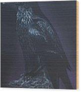 Noble Raven Wood Print