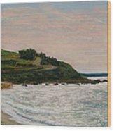 Nobska Lighthouse Wood Print by Joan Swanson