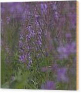 nodding fireweed Netherlands Wood Print