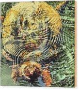 Noland Wood Print