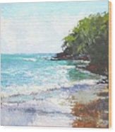 Noosa Heads Main Beach Queensland Australia Wood Print