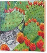 Nopal With Red Flowers  Wood Print by Nora Vega
