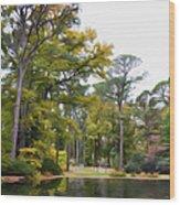 Norfolk Botanical Garden 6 Wood Print