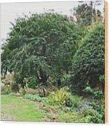 Norfolk Botanical Gardens 10 Wood Print