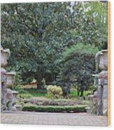 Norfolk Botanical Gardens 7 Wood Print