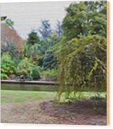 Norfolk Botanical Gardens Canal Wood Print