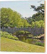 Norfolk Botanical Gardens In Color Wood Print