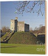 Norman Keep Cardiff Castle Wood Print