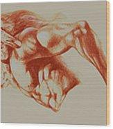 North American Minotaur Red Sketch Wood Print