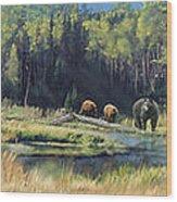 North American Waterhole Wood Print