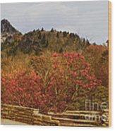 North Carolina Beauty Wood Print