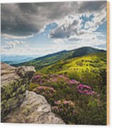 North Carolina Blue Ridge Mountains Roan Rhododendron Flowers Nc Wood Print by Dave Allen