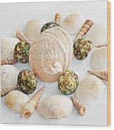 North Carolina Circle Of Sea Shells Wood Print