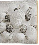 North Carolina Circle Of Sea Shells Bw Wood Print