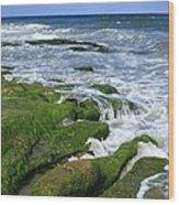 North Carolina Coastal Rocks Wood Print