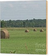 North Country Haystacks Wood Print by Kevin Croitz