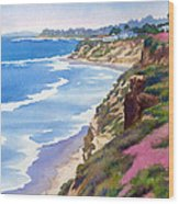 North County Coastline Revisited Wood Print