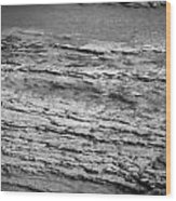 North Fork Of The Flathead River Montana Bw Wood Print