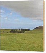 North Kona Greenscape Wood Print