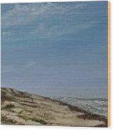 North Padre Island Wood Print