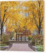 North Plaza Fountain Wood Print