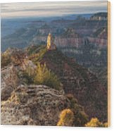 North Rim Grand Canyon Arizona Point Imperial Bathed By Sunrise Golden Light. Wood Print