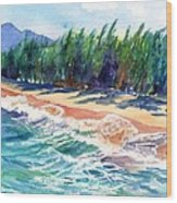North Shore Beach 2 Wood Print