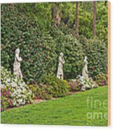 North Vista - Spring Flower Blooms At The North Vista Lawn Of The Huntington Library. Wood Print