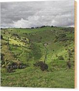 North West - Along Cressbrook Dale Wood Print