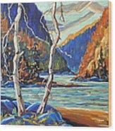 North West Lake By Prankearts Wood Print