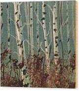 Northern Birch Wood Print