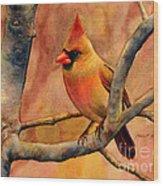 Northern Cardinal II Wood Print