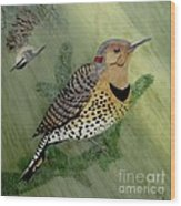 Northern Flicker And Red-breasted Nuthatch Wood Print