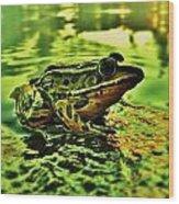 Northern Leopard Frog Wood Print