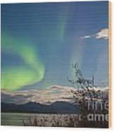 Northern Lights Full Moon Over Lake Laberge Yukon Wood Print