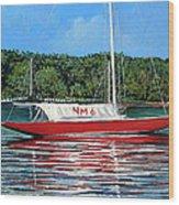 Northern Michigan 6 Wood Print