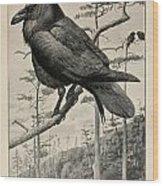 Northern Raven Wood Print