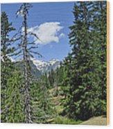 Northwest Frontier Wood Print