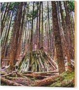 Northwest Old Growth Wood Print