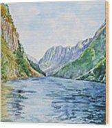 Norway Fjord Wood Print