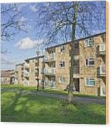 Norwich Apartments Wood Print by Tom Gowanlock